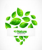 But I rarely do custom works..Nature background — Stock Vector