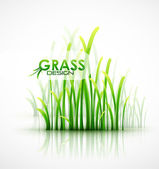 Vector grass background — Stock Vector