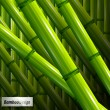 Royalty-Free Stock Vector Image: Green bamboo background