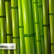 Bamboo background — Stock Vector #9804475