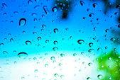 Dripped rain on glass — Stock Photo
