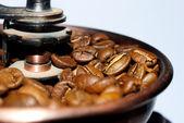 Kaffee in getreide — Stockfoto