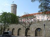 Parliament of Estonia and Pikk Hermann bastion — Stock Photo