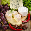 Different cheese kinds — Stock Photo