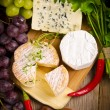 Different cheese kinds — Stock Photo #8065819