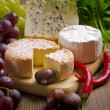Different cheese kinds — Stock Photo #8065851