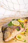 Fresh carp — Stockfoto
