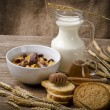 Muesli with low-fat milk and rusk — Stock Photo