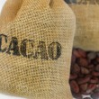 "Cacao beans in jut bag with inscription ""cacao"" isoleted on white — Stock Photo"