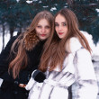 Two smiling girls in the winter forest — Stock Photo #8282362
