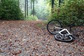 Bike accident — Stock Photo