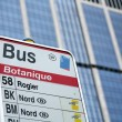 Bus transport — Stock Photo