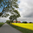 Danish landscape - Stock Photo