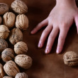 Nuts and hands — Stock Photo