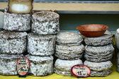 Corsican cheese — Stock Photo