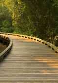 Curved Wooden Path — Stock Photo