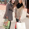Two beautiful young girls with shopping bags talking — Foto de stock #10413197