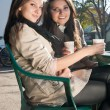 Stock Photo: Two beautiful young girls drinking coffee