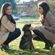 Stock Photo: Two beautiful young girls with a dog