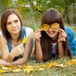 Stock Photo: Two girls joking with yellow leaves