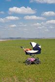 スプリング フィールドの乳母車 — ストック写真