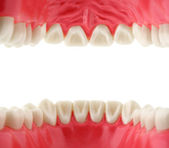 Mouth with teeth, inside view — Foto Stock