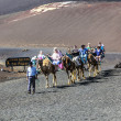 Royalty-Free Stock Photo: Tourists ride on camels being guided by local through the