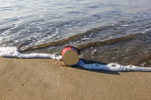 Litter at the beach — Stock Photo