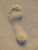 Footprint in the sand at the beach — Stock Photo