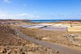 在 janubio,西班牙美丽传统盐水 — 图库照片