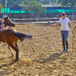 Female rider trains the horse in the riding course — Stock Photo