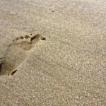 Mark of feet at the beach — Stock Photo #8298006