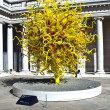 Sun at Dale Chihuly's  glass Art sculpture at the Legion of hono — ストック写真