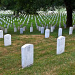 Graves at Arlington national Cemetery in Washington - 图库照片