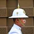 Parade of the kings Guards in the Grand Palace - Stock Photo