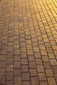 Grijs bestrating tegels — Stockfoto
