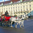 Driver of the fiaker waitinmg for tourisdts in vienna — Stock Photo