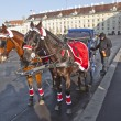 Horse drawn fiaker at the Hofburg for tourists in Vienna — Stock Photo #8892950
