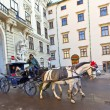 Stock Photo: Horse drawn fiaker at Hofburg for tourists in Vienna