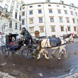 Horse drawn fiaker at the Hofburg for tourists in Vienna — Stock Photo #8893078
