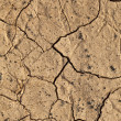 Dry cracked earth texture — Stock Photo #9009637