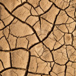 Dry cracked earth texture — Stock Photo #9009766