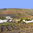 Stock Photo: Farmhouse in rural hilly arein Lanzarote