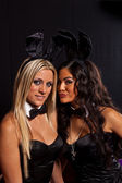 Playboy shooting with models for visitors at photokina exhibitio — Stock Photo