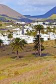 Landscape Lanzarote, Small town Haria — Stock Photo