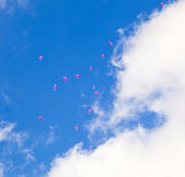 Red balloons with the messages in the blue sky — Stock Photo