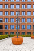 Facade of modern brick building with a tree in front — Stock Photo