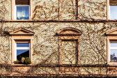 Fasáda starého domu s oknem — Stock fotografie