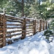 Log Fence Covered in snow — Stock Photo #8370230