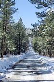 Estrada coberta de neve — Fotografia Stock